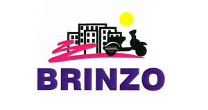 170x90_LOGO_brinzo