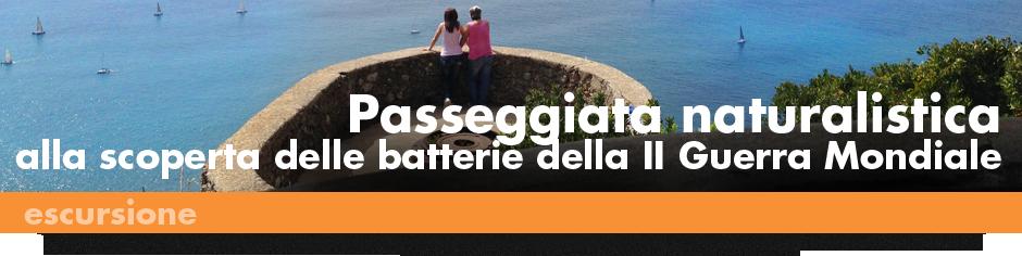940x215_ESCURSIONI_Batterie