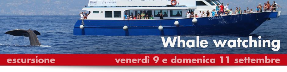 940x215_BANNER_2016_WHALEwatching