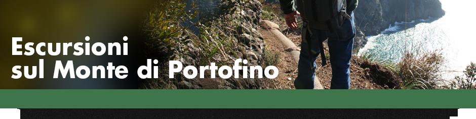940x215_BANNER_escursioni_monte